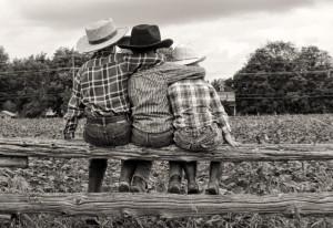 Kids on fence-warm