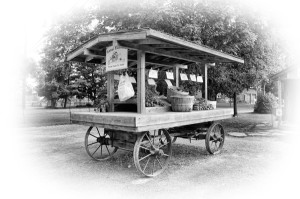 Our Old-style Roadside Stand...a summer tradition for many customers!
