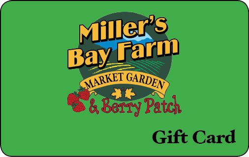Miller's Bay Farm Lombardy Ottawa Rideau Ferry Family Pumpkin Patch Strawberries Ontario
