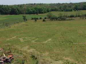 Aerial photo of field with I love you mowed into the grass